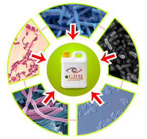 kandungan bakteri suplemen organik cair gdm