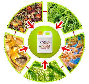 bahan pembuatan pupuk organik cair gdm
