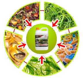 bahan pupuk organik cair gdm spesialis tanaman hias