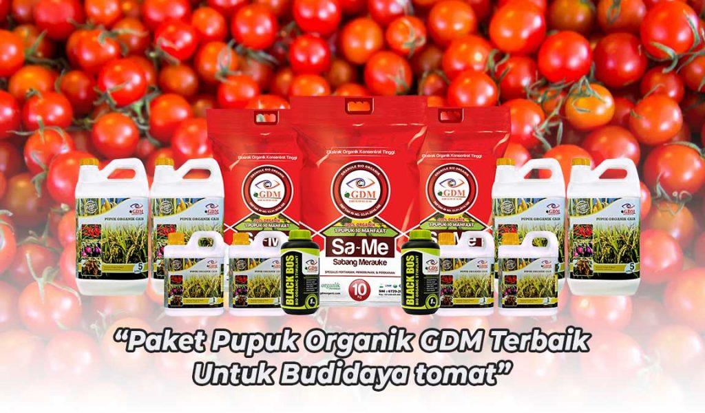 pupuk organik untuk tomat