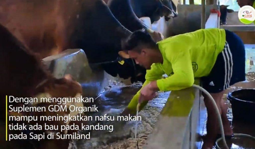 penggunaan sumiland farm
